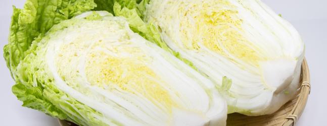 お味噌汁のおすすめ具材、白菜